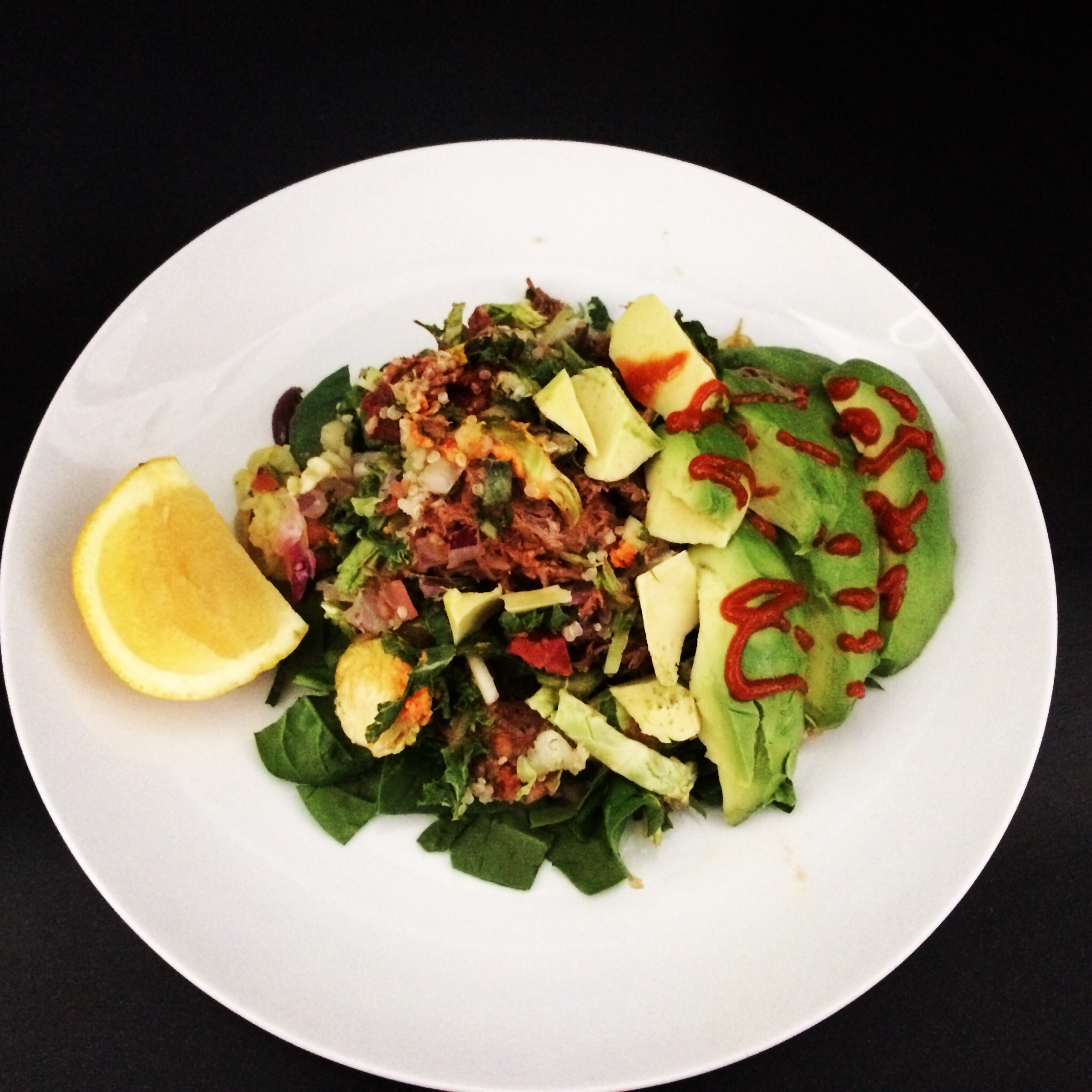 Image Result For Wellness Simple Salmon